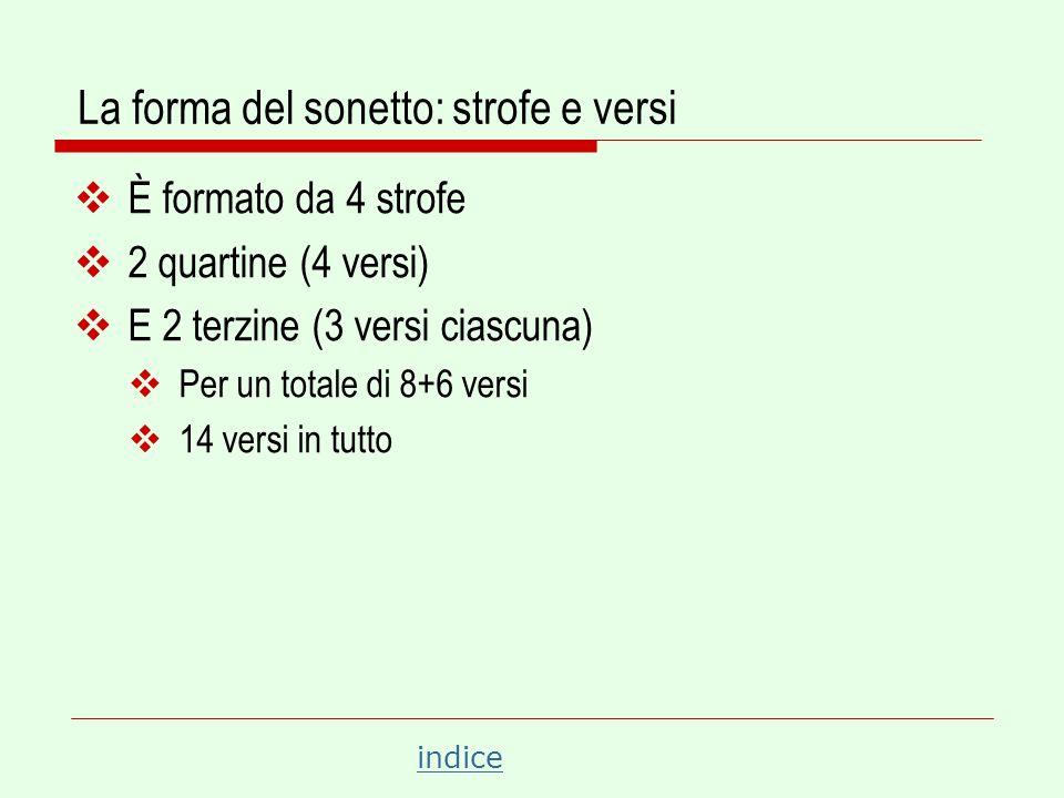 La forma del sonetto: strofe e versi