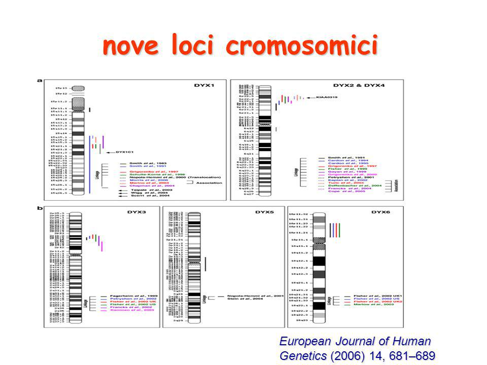 nove loci cromosomici European Journal of Human Genetics (2006) 14, 681–689