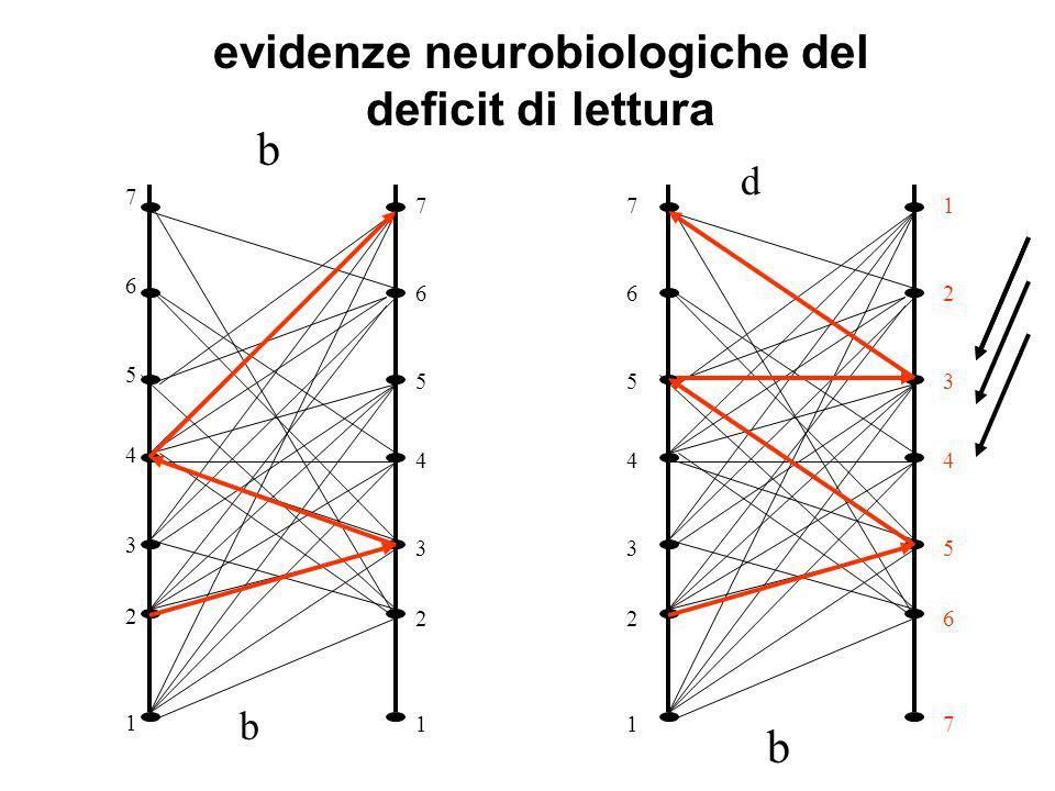 evidenze neurobiologiche del deficit di lettura
