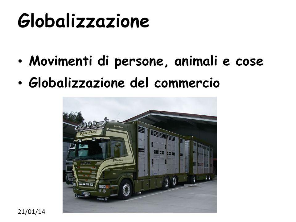 Globalizzazione Movimenti di persone, animali e cose