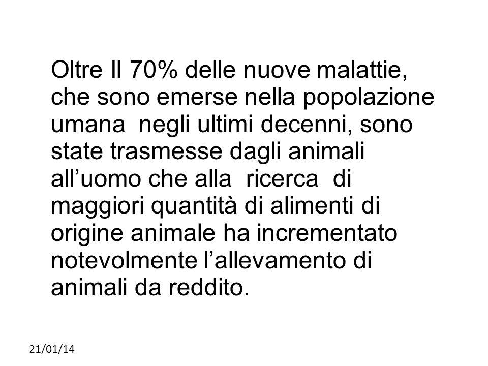 Oltre Il 70% delle nuove malattie, che sono emerse nella popolazione umana negli ultimi decenni, sono state trasmesse dagli animali all'uomo che alla ricerca di maggiori quantità di alimenti di origine animale ha incrementato notevolmente l'allevamento di animali da reddito.