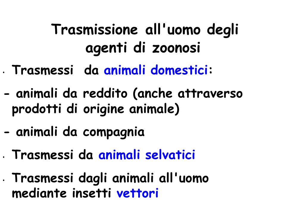Trasmissione all uomo degli agenti di zoonosi