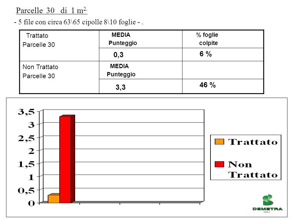 Parcelle 30 di 1 m2. - 5 file con circa 63\65 cipolle 8\10 foglie - . Trattato. Parcelle 30. MEDIA.