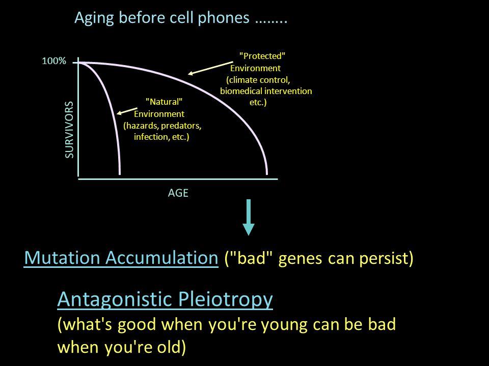 Antagonistic Pleiotropy