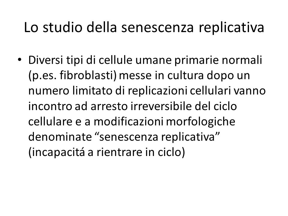 Lo studio della senescenza replicativa