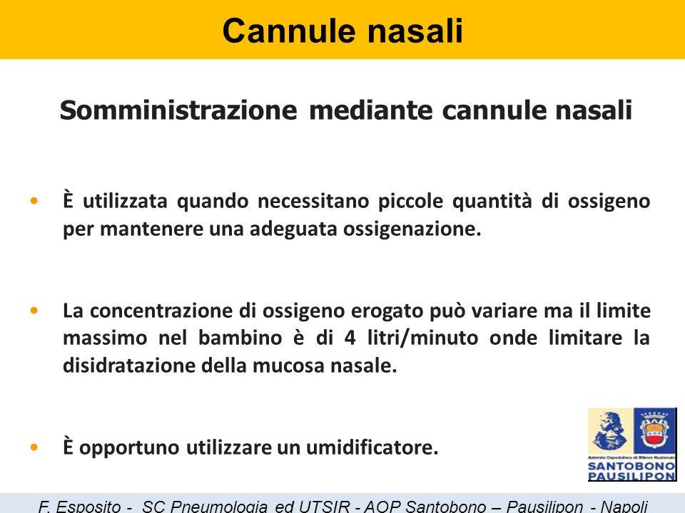 Cannule nasali Somministrazione mediante cannule nasali