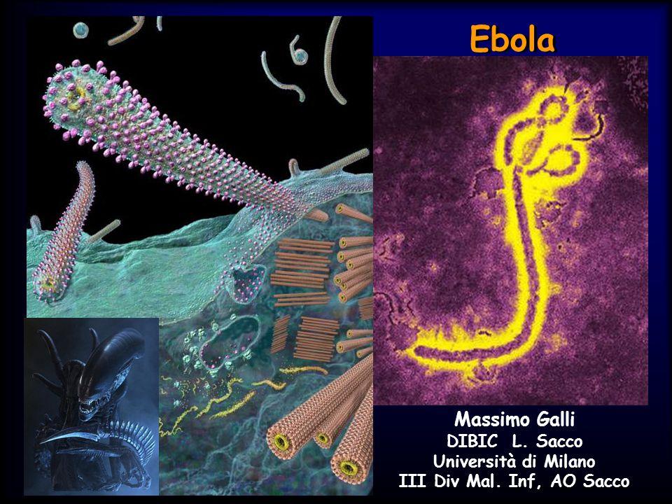 Ebola Massimo Galli DIBIC L. Sacco Università di Milano