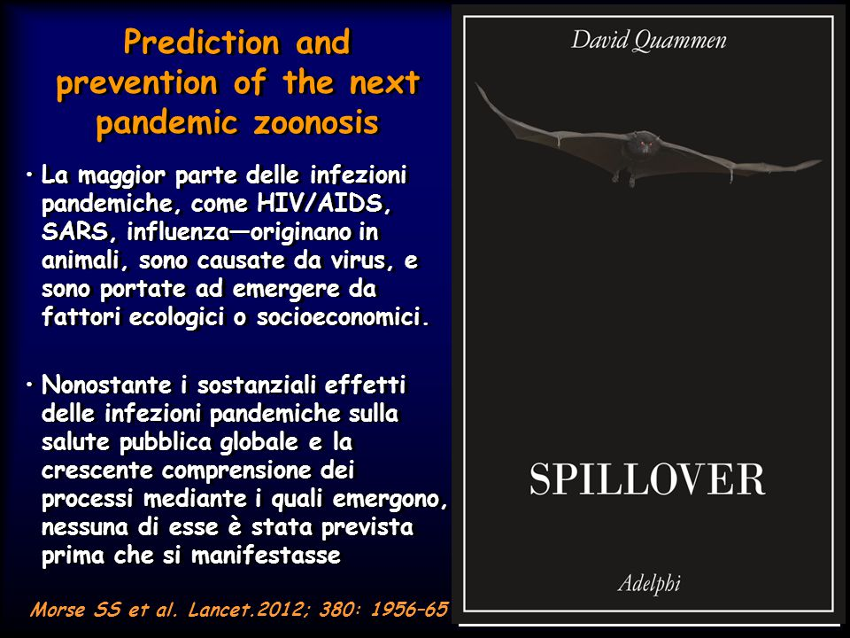 Prediction and prevention of the next pandemic zoonosis