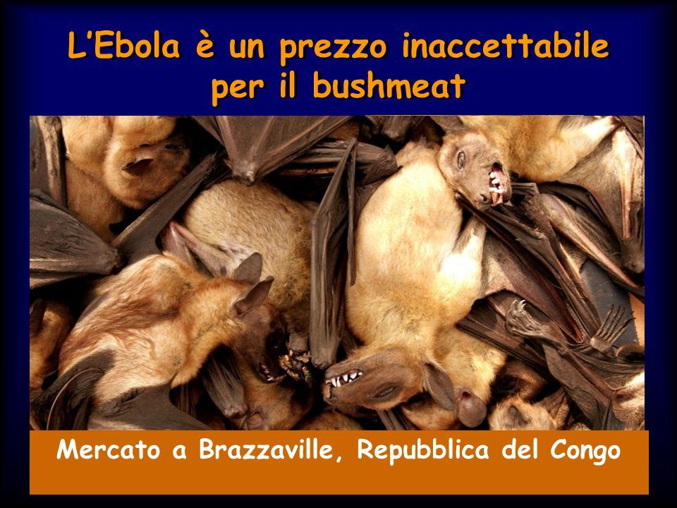 L'Ebola è un prezzo inaccettabile per il bushmeat
