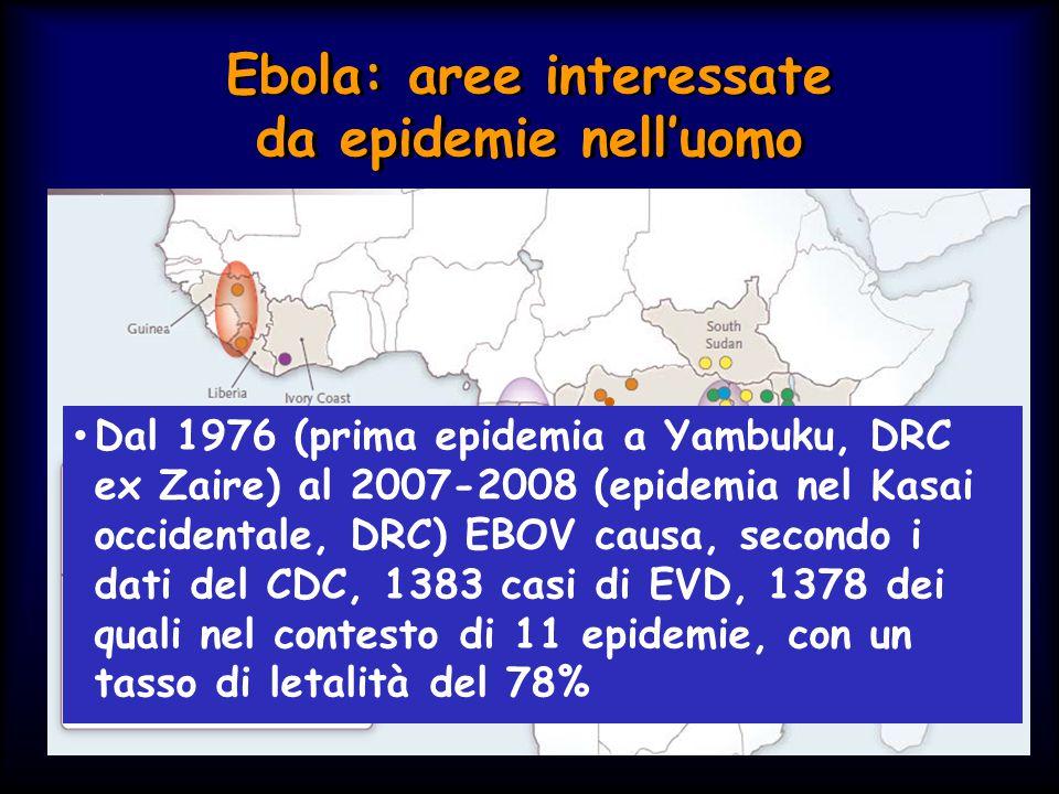 Ebola: aree interessate da epidemie nell'uomo