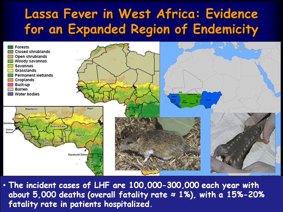 Lassa Fever in West Africa: Evidence for an Expanded Region of Endemicity