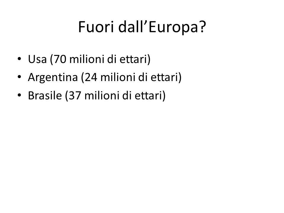 Fuori dall'Europa Usa (70 milioni di ettari)