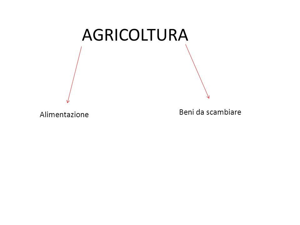AGRICOLTURA Beni da scambiare Alimentazione