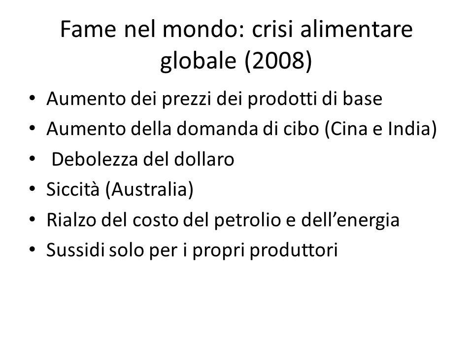 Fame nel mondo: crisi alimentare globale (2008)