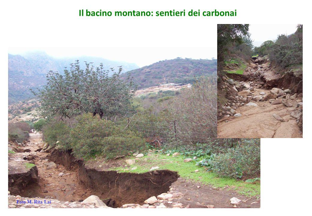 Il bacino montano: sentieri dei carbonai