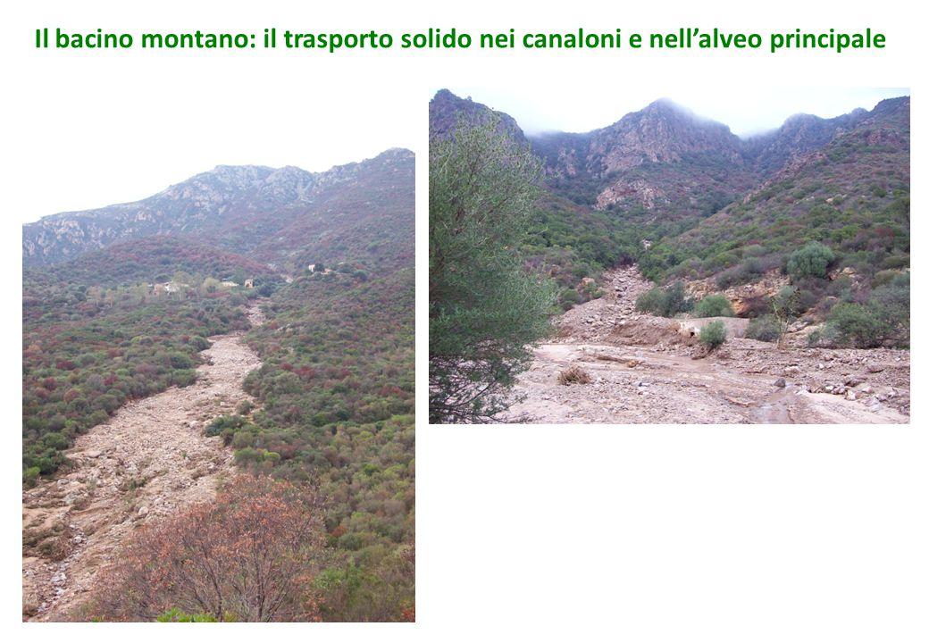 Il bacino montano: il trasporto solido nei canaloni e nell'alveo principale
