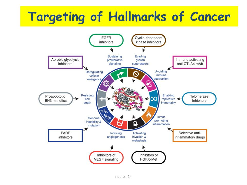 Targeting of Hallmarks of Cancer