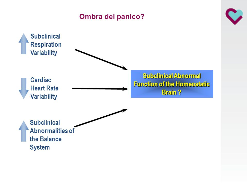 Function of the Homeostatic Brain