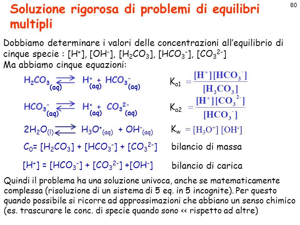 Soluzione rigorosa di problemi di equilibri multipli