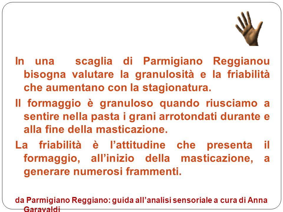In una scaglia di Parmigiano Reggianou bisogna valutare la granulosità e la friabilità che aumentano con la stagionatura.