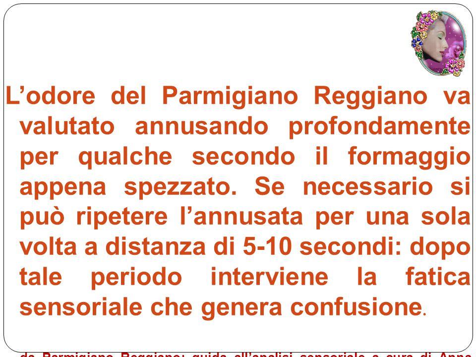 L'odore del Parmigiano Reggiano va valutato annusando profondamente per qualche secondo il formaggio appena spezzato. Se necessario si può ripetere l'annusata per una sola volta a distanza di 5-10 secondi: dopo tale periodo interviene la fatica sensoriale che genera confusione.