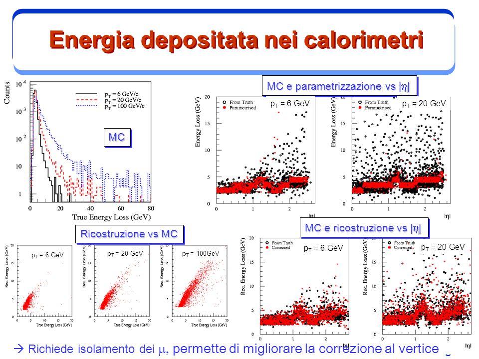 Energia depositata nei calorimetri