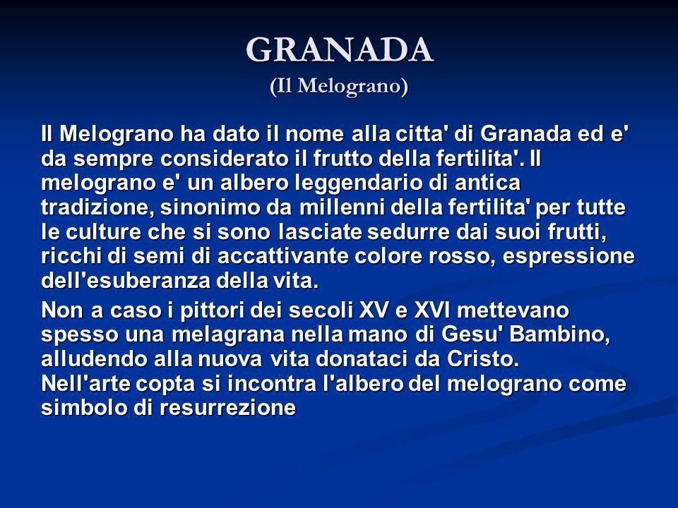 GRANADA (Il Melograno)