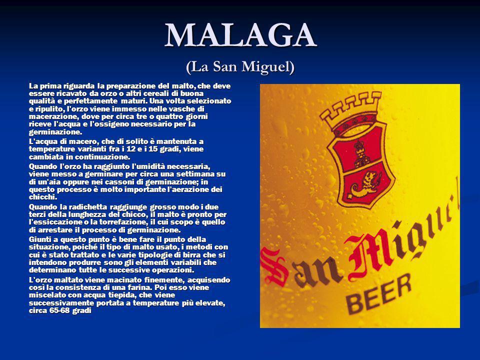 MALAGA (La San Miguel)