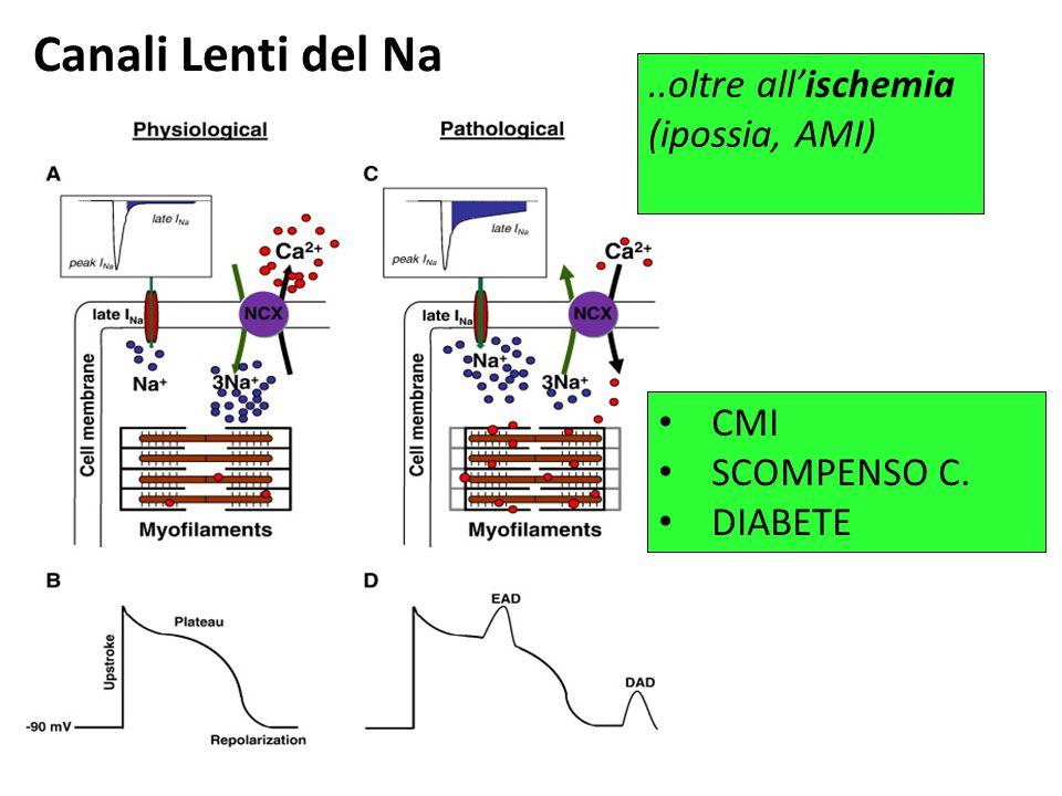 Canali Lenti del Na ..oltre all'ischemia (ipossia, AMI) CMI