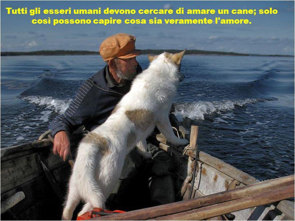 Tutti gli esseri umani devono cercare di amare un cane; solo così possono capire cosa sia veramente l amore.