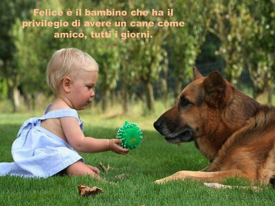 Felice è il bambino che ha il privilegio di avere un cane come amico, tutti i giorni.