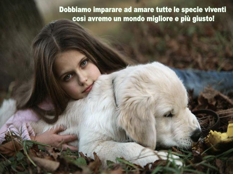 Dobbiamo imparare ad amare tutte le specie viventi
