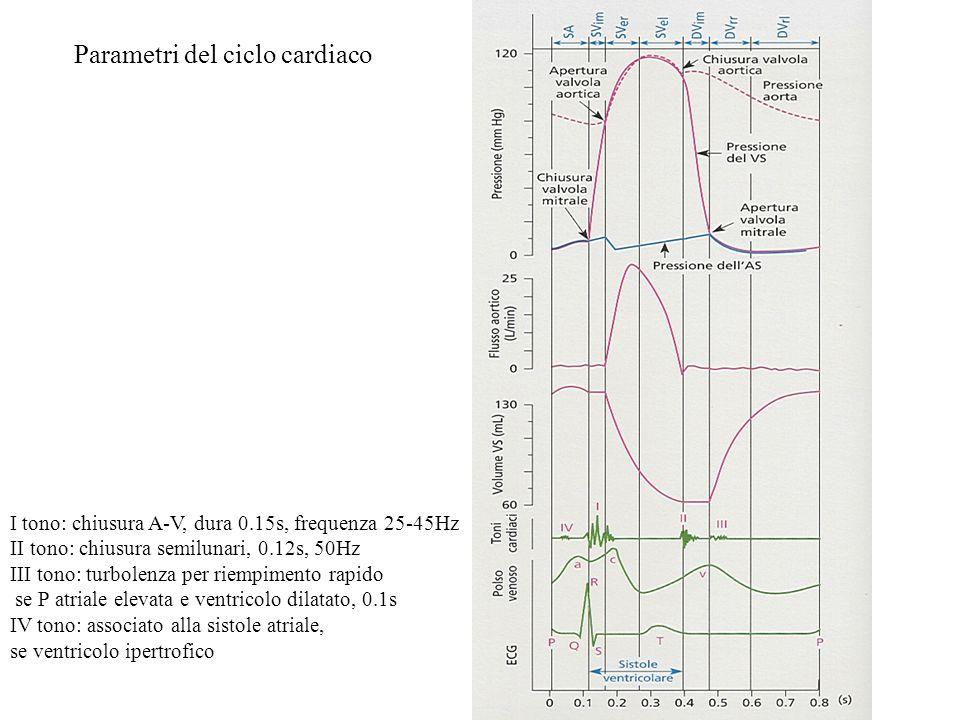 Parametri del ciclo cardiaco
