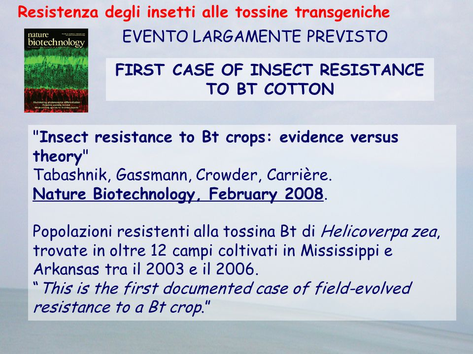 FIRST CASE OF INSECT RESISTANCE TO BT COTTON