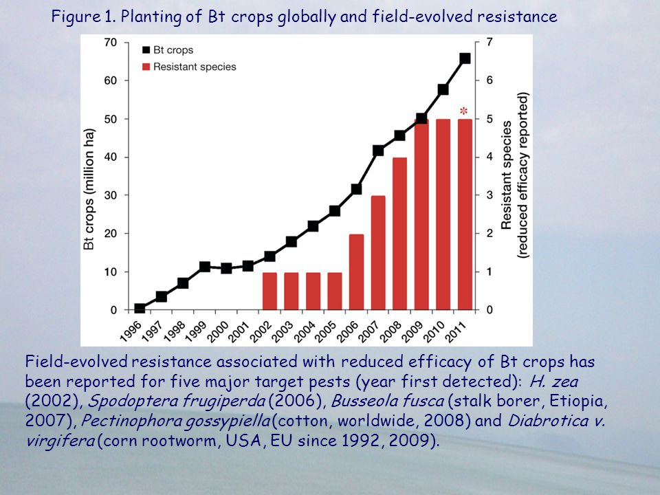 Figure 1. Planting of Bt crops globally and field-evolved resistance
