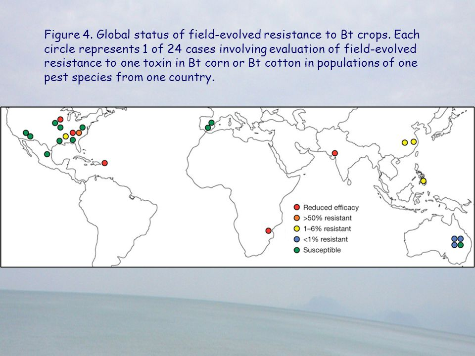 Figure 4. Global status of field-evolved resistance to Bt crops