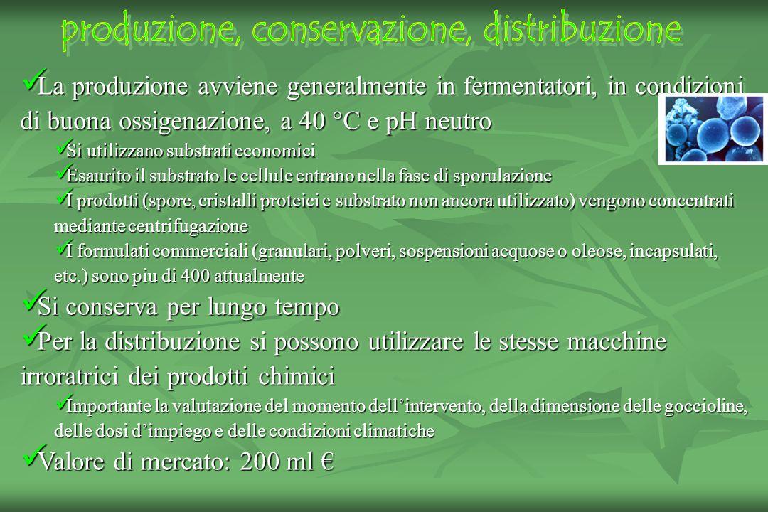 produzione, conservazione, distribuzione