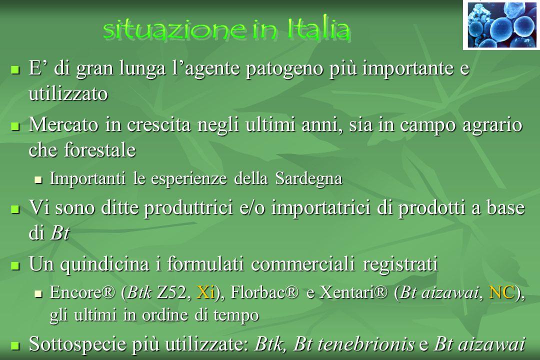 situazione in Italia E' di gran lunga l'agente patogeno più importante e utilizzato.