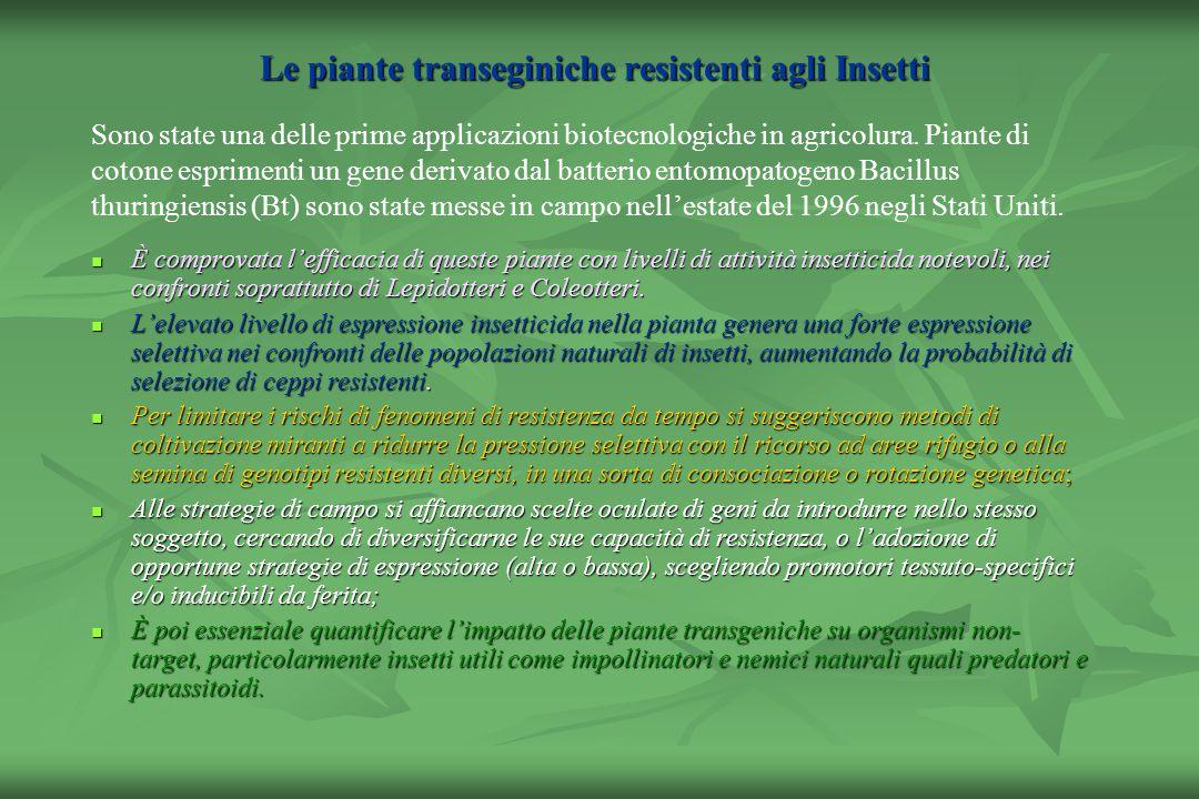 Le piante transeginiche resistenti agli Insetti
