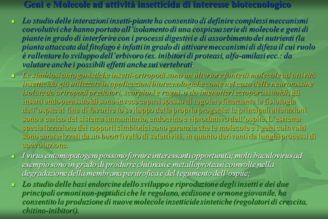 Geni e Molecole ad attività insetticida di interesse biotecnologico