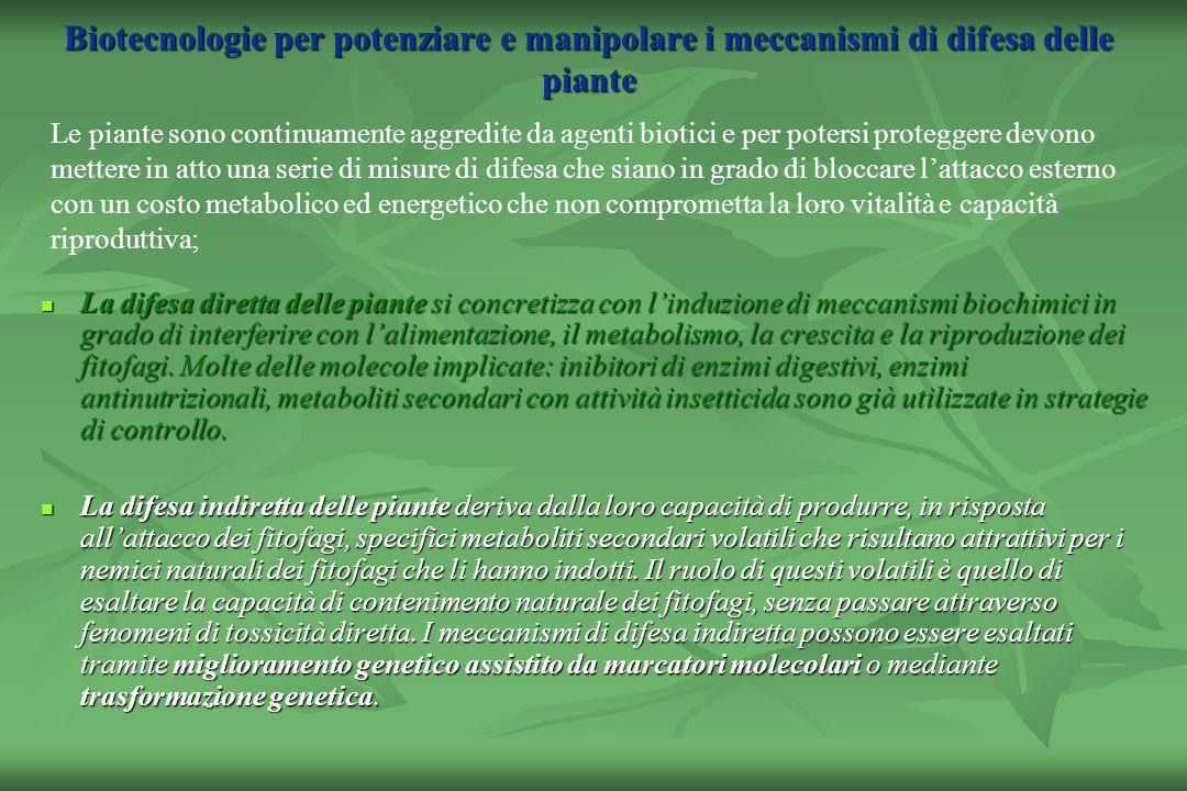 Biotecnologie per potenziare e manipolare i meccanismi di difesa delle piante