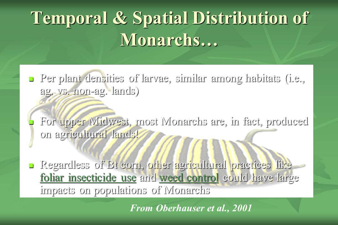 Temporal & Spatial Distribution of Monarchs…