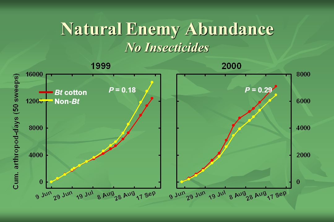 Natural Enemy Abundance No Insecticides
