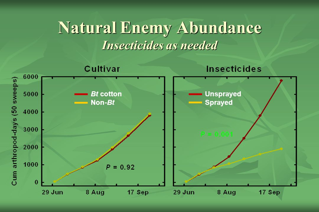 Natural Enemy Abundance Insecticides as needed