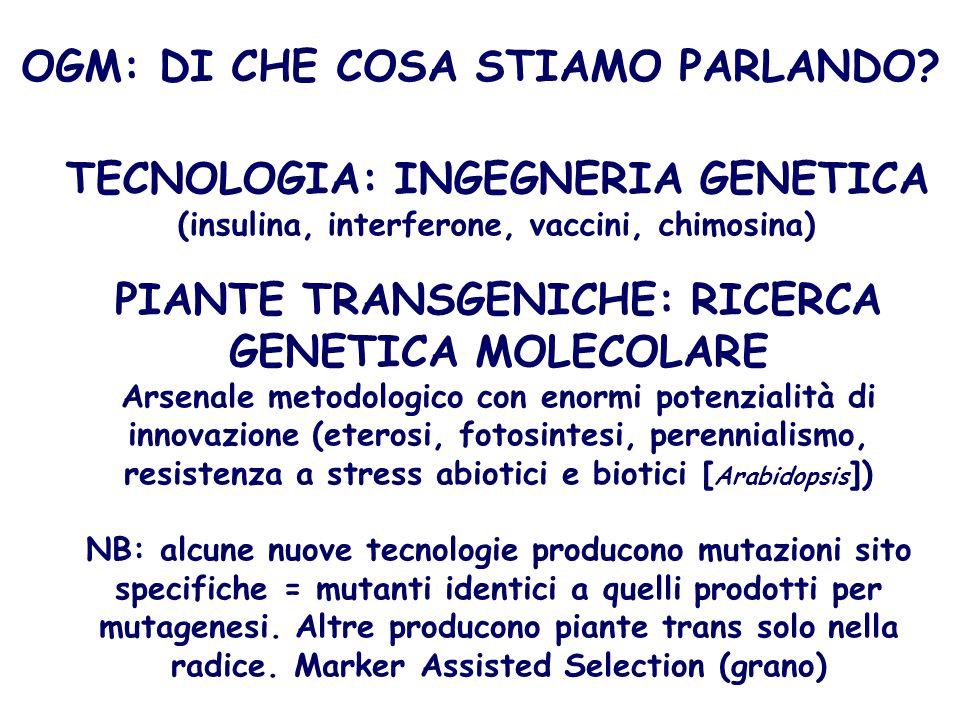 OGM: DI CHE COSA STIAMO PARLANDO
