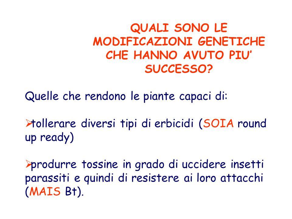 QUALI SONO LE MODIFICAZIONI GENETICHE CHE HANNO AVUTO PIU' SUCCESSO