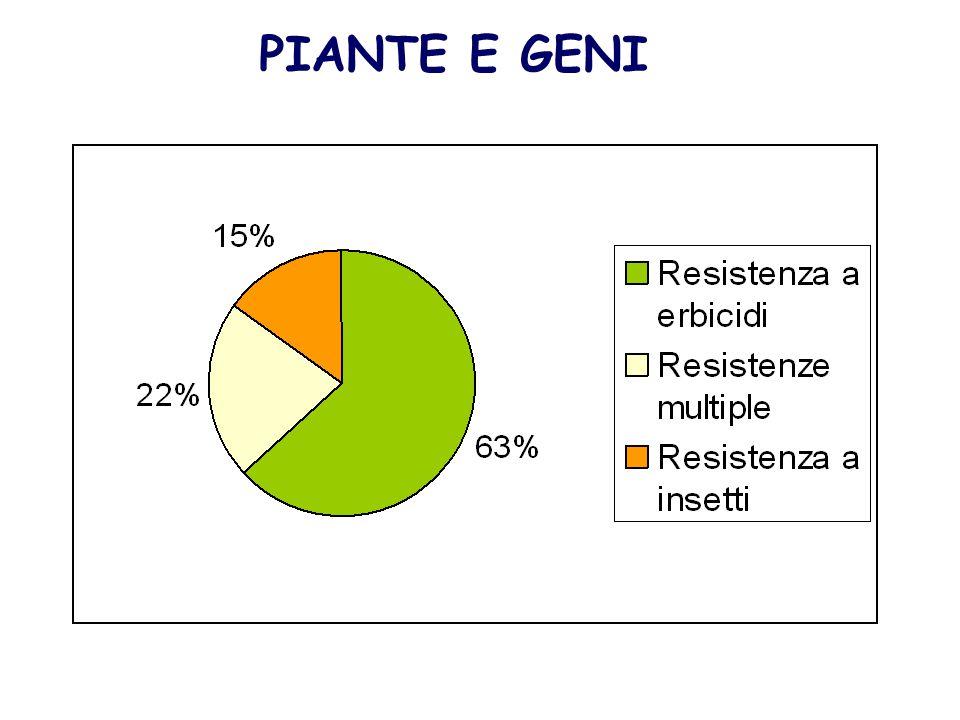 PIANTE E GENI