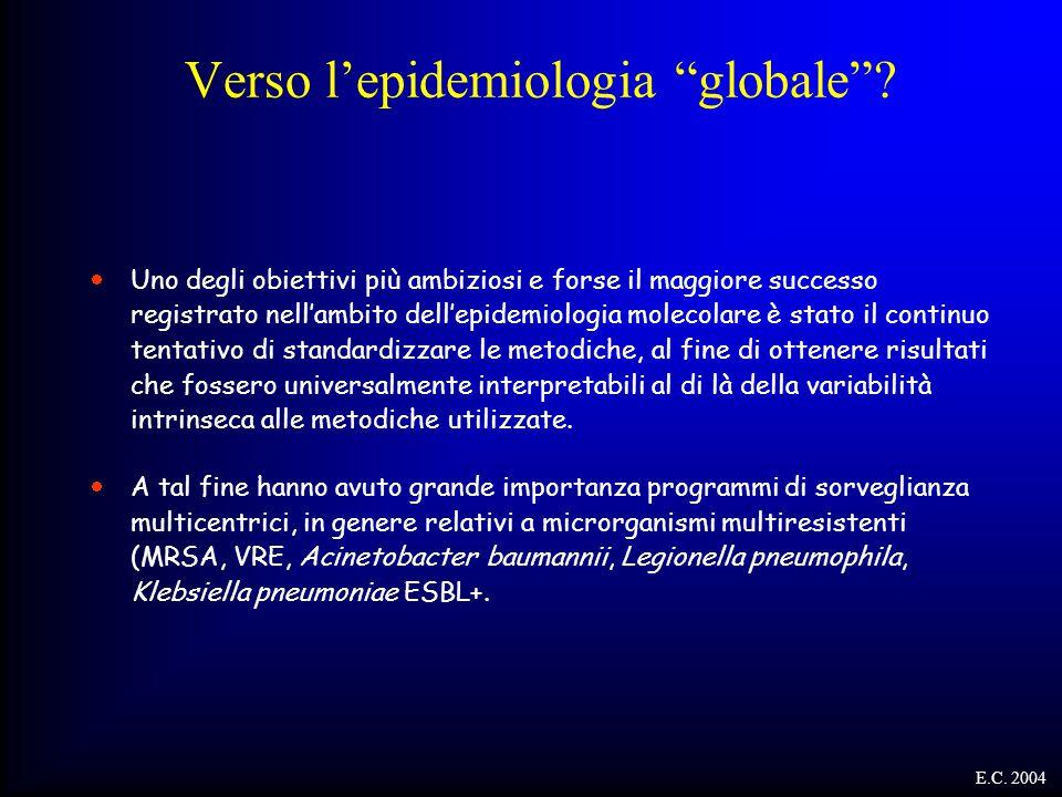 Verso l'epidemiologia globale