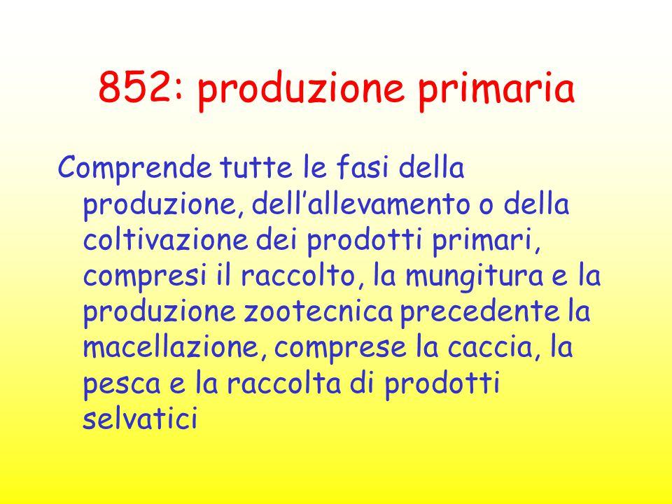 852: produzione primaria