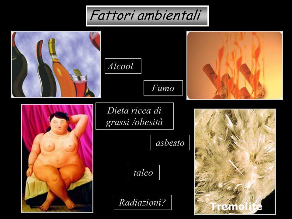 Dieta ricca di grassi /obesità